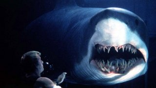 The Best Shark Movies That Aren't Jaws